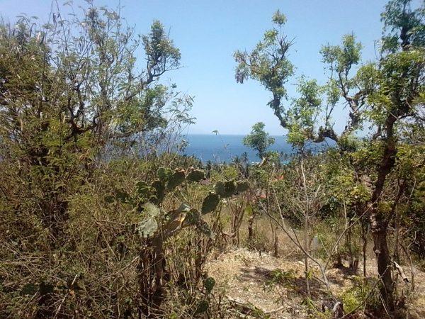 Tanah di Buyuk, Nusa Penida