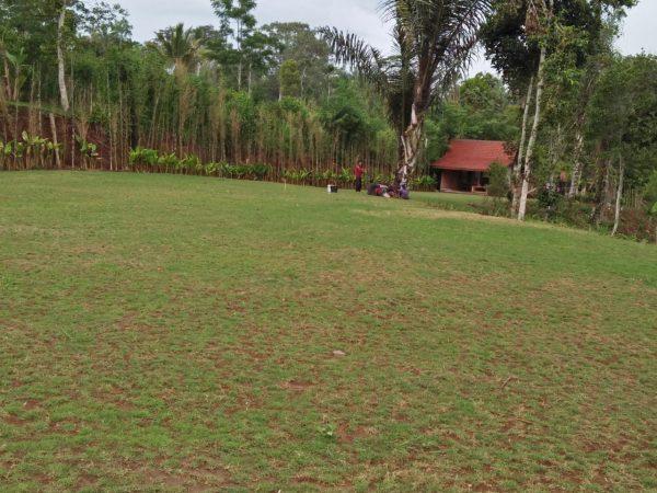 Dijual lahan sudah tertata untuk pengembangan daerah Ubud Bali Payaangan